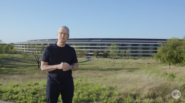 A casually dressed Tim Cook stands in a green field.